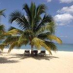 Pristine, perfect beach
