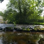 River Trieux which runs alongside campsite bt no mosses due to lots of lovely wood fires on site