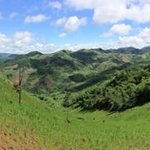 One of the walks to learn about crops the Akha grow