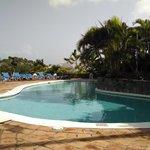 Pool at Papa Dons