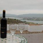 Gozando de un buen vino con excelente vista