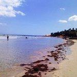 praia jeri