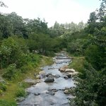 Al pasar un puentecito hacia el area de la piscina se observa este hermoso paisaje.