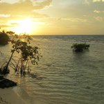 Morning comes to the Caye