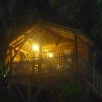 cabane de nuit