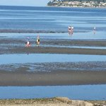 Families in the bay at low tide.