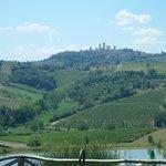 Views to vinyard
