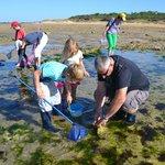 Pêche avec La Maison de la Nature de l'île d'Oléron