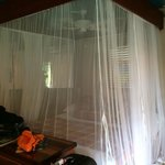 Mosquito netting around king bed