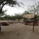 Wagon camp on the grounds