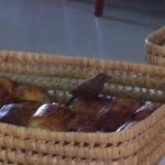 Aves en la canasta de pan!!!