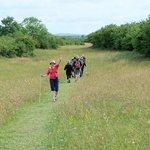 Walking in the Burren