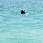 Nadando estilo espalda.-