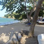 The Beach - Serenity