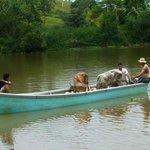 Costa Rica - Hotel La Palapa Ecolodge Resort Mangrove Tour of La Palapa