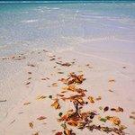 Whitehaven Beach - Tongue Island