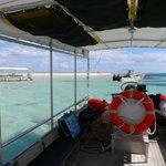snorkelling trip to Sandbar