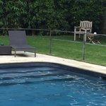 La piscine et le jardin principaux atouts de l'hôtel