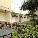 Executive Lounge garden