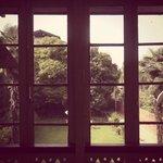 Window outside bedroom