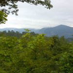 View of Rumbling Bald from first Zip Line at Canopy Ridge Farm