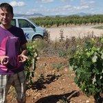 our guide explaining grape cultivation