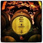 Coppo Wine Cellar