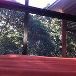Rivergum Spa Suite - black screens around outdoor areas