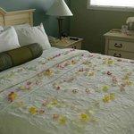 Bedroom & Ammenities