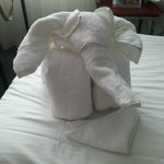 The Elephant Made out of Towel
