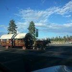 Horse drawn wagon rides (for a fee)