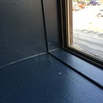 Spider webs, dust and dirt in windows