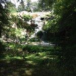 Japanese gardens & waterfall