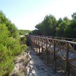 Дорога к пляжу
