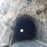 The Tunnel on the Road