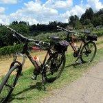Bike na Toscana