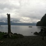 Photo de Kayakers Cove