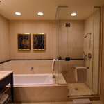 The Bathtub and Shower