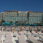 Beach chaises