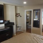 TV, microwave, fridge, iron/ironboard, and closet