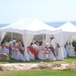 My Cypriot Wedding @ The St George