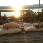 Sunrise over greyhounds