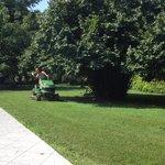 Elena cutting the grass!
