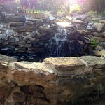 sweet little waterfall near our table