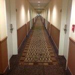 Looooooooong Hallway
