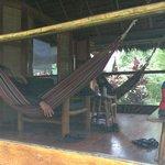 comfy hammocks