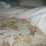Blood stains on mattress
