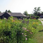perennial garden w/ Early Bird cottage
