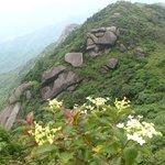 Foto de Guangxi Maoer Mountain Reserve