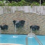 Pool Near Receiption